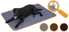 Bodyquard Dog blanket